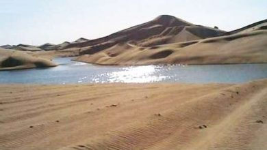 Photo of وتتوالى المنح الالهية علي مصر.. الكشف عن نهر عظيم فى شرق العوينات يكفي الشرب لـ 150 عامًا