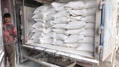 Photo of QSD militia impedes delivery of flour for ninth day in Hasaka and Qamishli cities