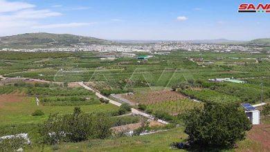 Photo of الاحتلال الإسرائيلي يخطف راعي أغنام سوري بريف القنيطرة