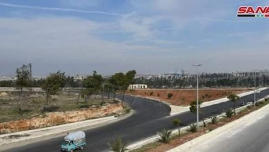 Photo of With a cost of SYP 825 million, Sadcob and irrigation canal bridges rehabilitated and put into service in Aleppo