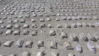 Photo of مصادرة كمية من الحبوب المخدر على الحدود السورية الأردنية
