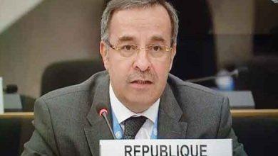 Photo of السفير آلا: الدول الداعمة للإرهاب لا تمتلك مشروعية التقدم بقرارات حول حالة حقوق الإنسان في سوريا
