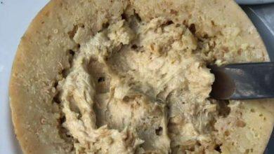 Photo of «مصنوع من الديدان».. أخطر أنواع الجبن في العالم