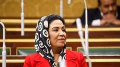 Photo of Egyptian MP: Western coercive measures on Syria will not achieve their goals
