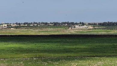 Photo of تل ساقي  تل الرجال على أرض الجولان