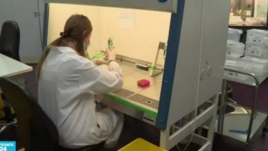 Photo of ظهور سلالة جديدة من فيروس كورونا في فرنسا