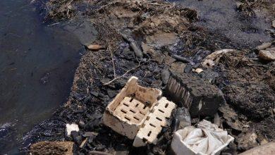 Photo of بسبب النفط المسروق.. كارثة طبيعة من صنع البشر شمال شرق سوريا