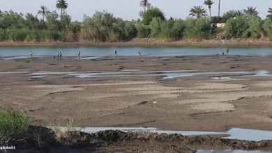 Photo of وزير الزراعة: الجفاف يطال كل المحافظات