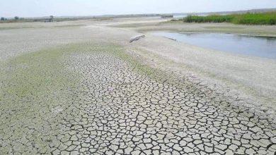 Photo of لليوم الثالث.. تركيا تسرق مياه «نهر الفرات»