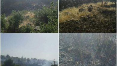 Photo of A fire broke out in Hobeish area in the northern countryside of Sweida