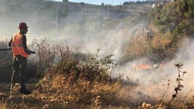 Photo of A large fire breaks out in agricultural crops in Homs