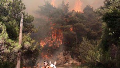 Photo of الحرائق تصل إلى بلدة البستان اللبنانية في جرود الهرمل