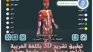 Photo of إطلاق تطبيق تشريح بالعربية الأول من نوعه في جامعة دمشق