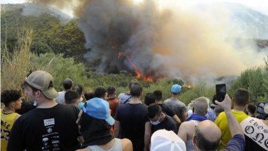 Photo of حرائق الغابات في الجزائر: إعلان الحداد الوطني مع ارتفاع حصيلة القتلى