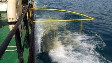 Photo of « تبريرات».. حول عدم استخدام «زورق مكافحة التلوث البحري» عند الساحل السوري
