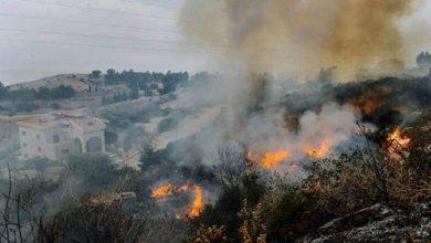 Photo of ريف طرطوس.. 28 حريقاً في يوم واحد يقضي على 100 دونم من الزيتون