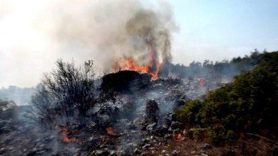 Photo of ستة حرائق في مدينة اللاذقية