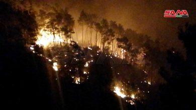 Photo of «شهر الحرائق» يتكرر…. حريق بريف اللاذقية والإطفاء يسيطر على 70٪ منه